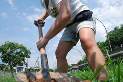 You are currently viewing Grito Verde – como plantar um  domingo maneiro